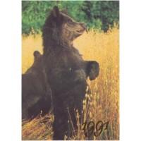 Календарик кишеньковий, 1991 рік